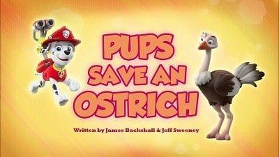 Season 05, Episode 02 Pups Save an Ostrich