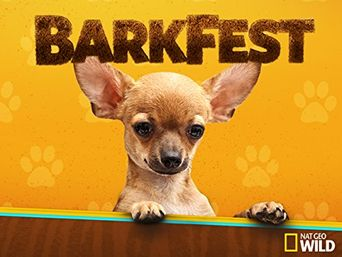 Watch BarkFest