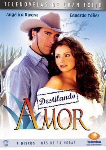Distilling Love Poster