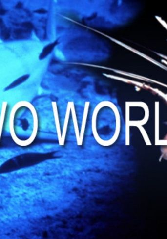 Two Worlds Poster