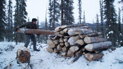 Watch SHOW TITLE Season 09 Episode 09 Winter's Grip