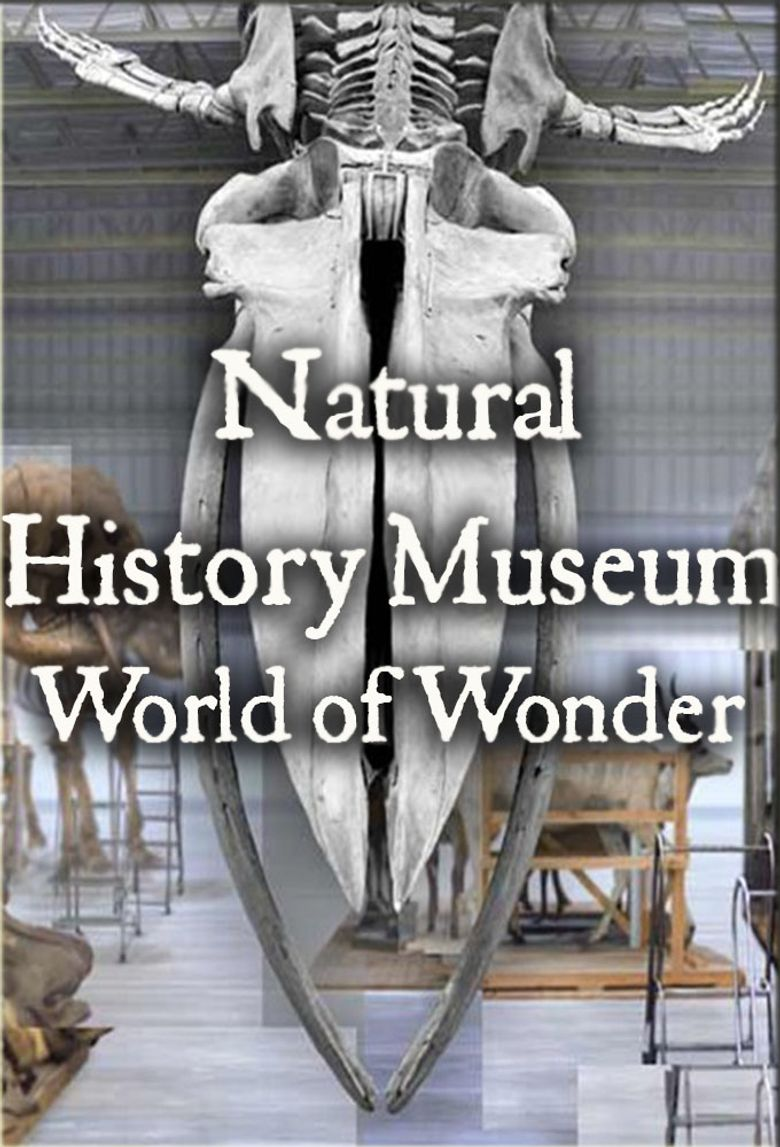 Natural History Museum: World of Wonder Poster