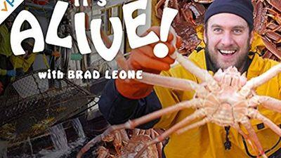 Season 03, Episode 02 Brad Cooks Crabs in Alaska (Part 2)