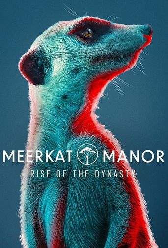 Meerkat Manor: Rise of the Dynasty Poster