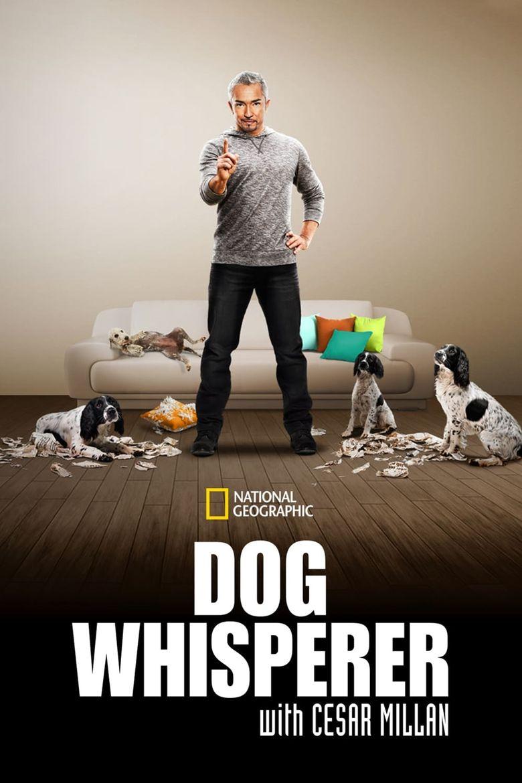 Dog Whisperer Poster