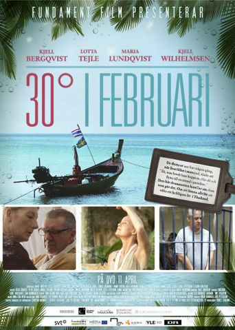 30 Degrees in February Poster