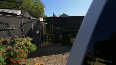 Season 10, Episode 23 November 21, 2012