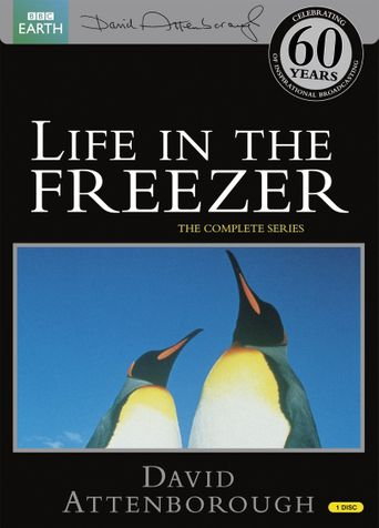 Life in the Freezer Poster