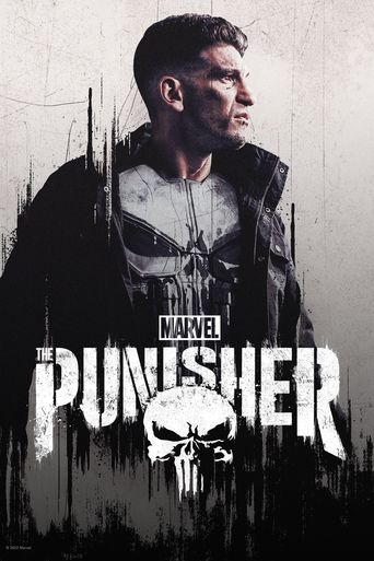 Marvel's The Punisher Poster