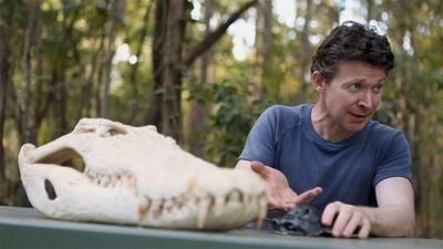 Season 01, Episode 08 Saltwater Crocodiles