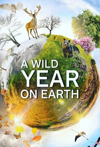 A Wild Year On Earth Poster