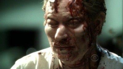 Season 10, Episode 05 Bloodsport