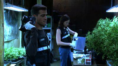 Season 06, Episode 05 Gum Drops