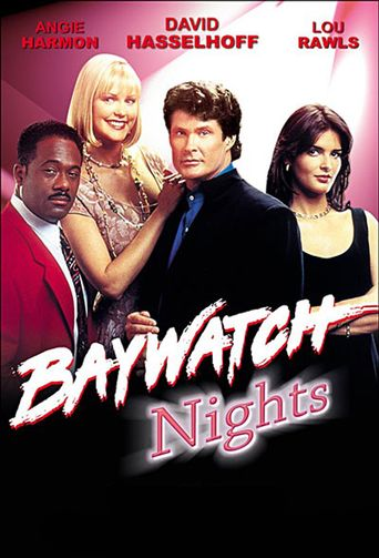 Baywatch Nights Poster