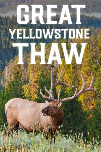 Great Yellowstone Thaw Poster