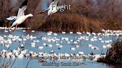 Season 01, Episode 06 Flight