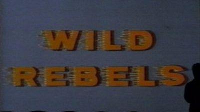Season 02, Episode 07 The Wild Rebels
