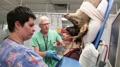 untold stories of the er zombie uprising