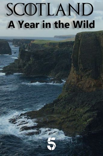 Scotland: A Year In The Wild Poster