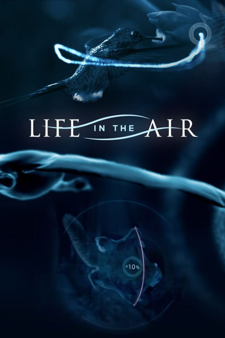 Life in the Air Poster