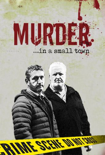Murder In A Small Town Poster