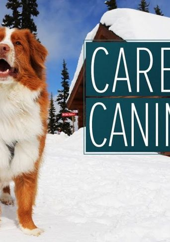 Career Canines Poster