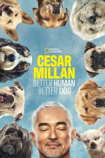Cesar Millan: Better Human, Better Dog Poster