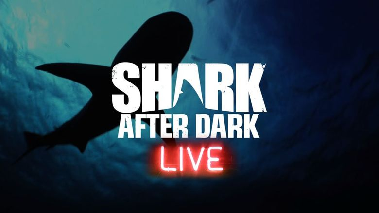 Shark After Dark Poster