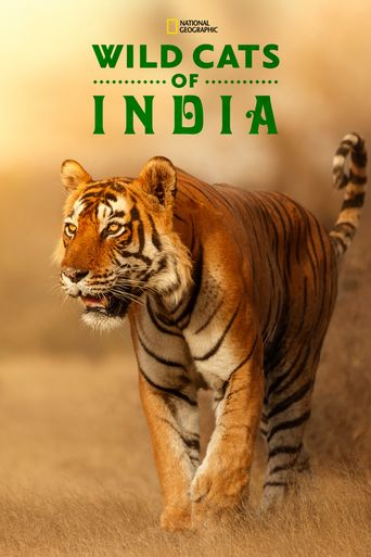 Wild Cats of India Poster