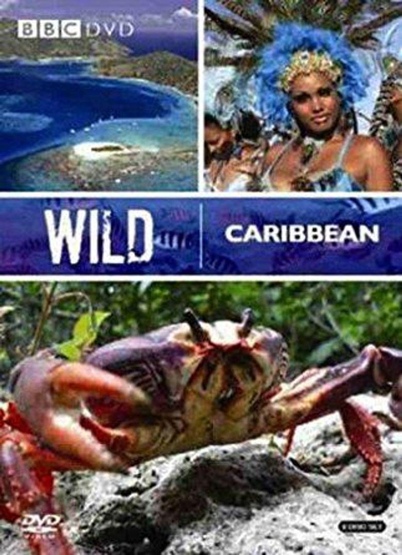 Wild Caribbean Poster