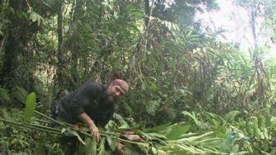 Season 03, Episode 06 Papua New Guinea