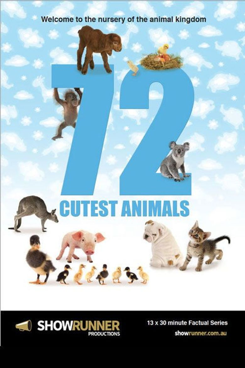 72 Cutest Animals Poster