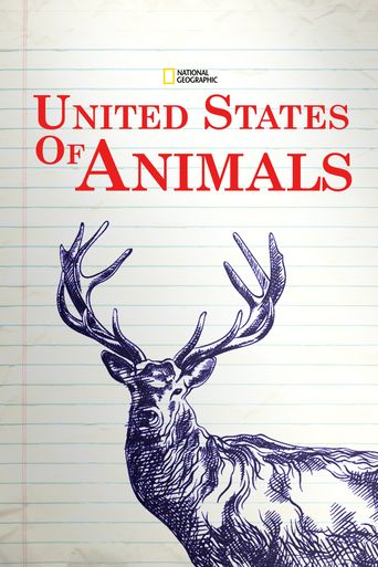 United States of Animals Poster