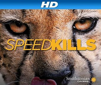 Speed Kills Poster