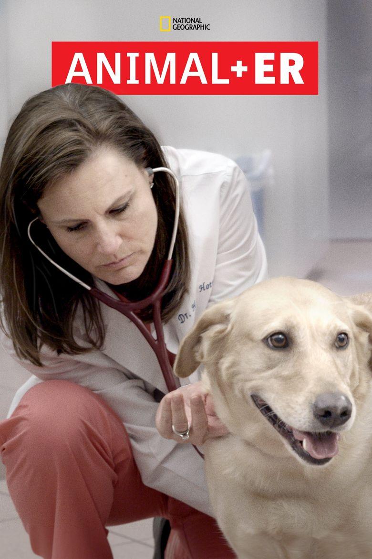 Animal ER Poster