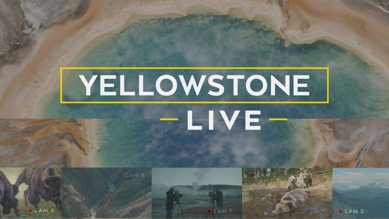 Yellowstone LIVE (TV Mini-Series 2018) Poster