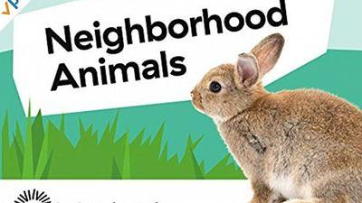 Season 01, Episode 03 Neighborhood Animals