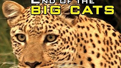 Season 01, Episode 03 Cheetah