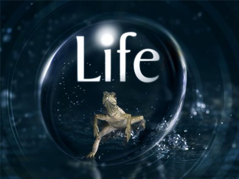 Life on Location Poster