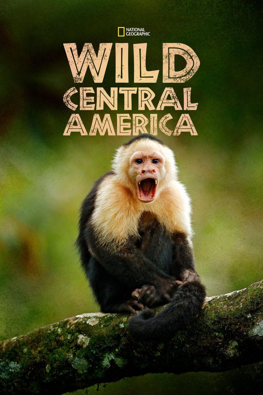 Wild Centeral America Poster