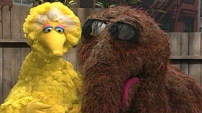 Season 25, Episode 105 Big Bird and Snuffy Add