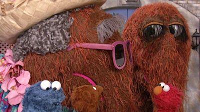 Sesame Street Season 33: Where To Watch Every Episode | Reelgood