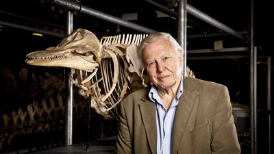 Season 31, Episode 07 Attenborough's Life Stories: Part Three - Our Fragile Planet