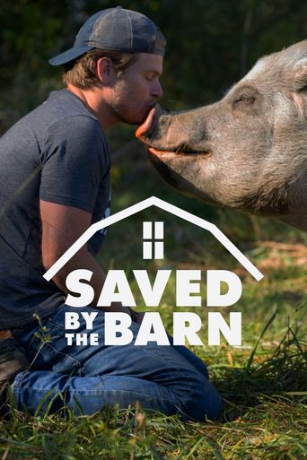 Saved By The Barn Poster