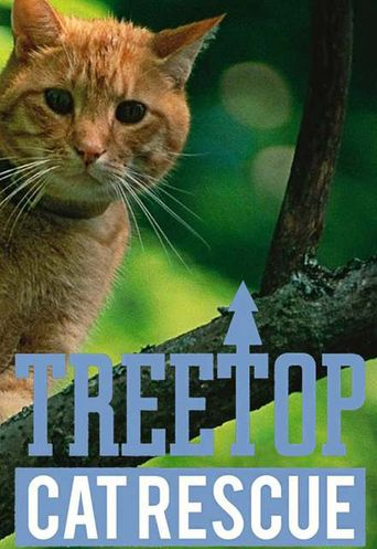Treetop Cat Rescue Poster