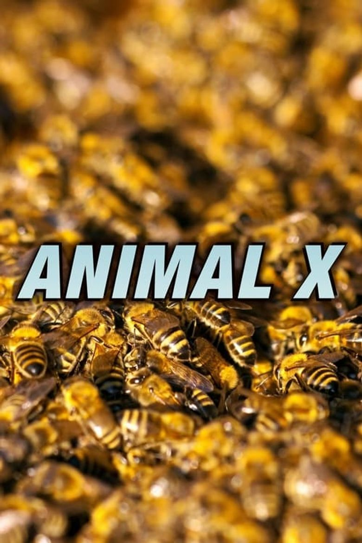 Animal X Poster