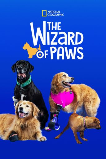 The Wizard of Paws Poster