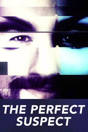 The Perfect Suspect Poster