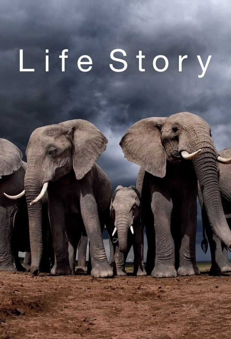 Life Story Poster