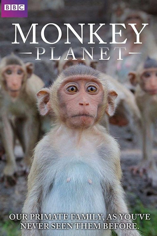 Monkey Planet Poster